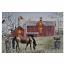24X16 LIGHT UP HORSE & BARN
